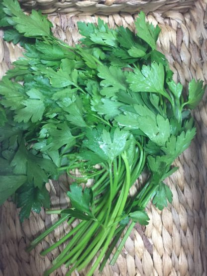 flat parsley