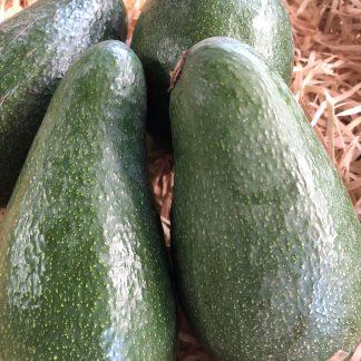 Furte avocado