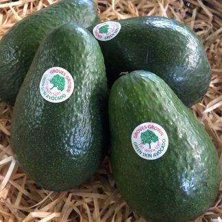 Wurts avocado